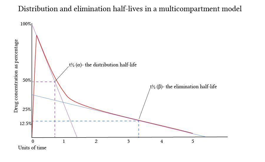 Distribution and elimination half-lives in a multicompartment model