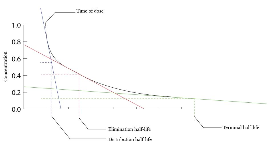 Three compartment model graph -multiple half lives