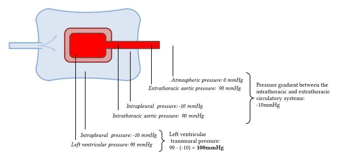 LV transmural pressure