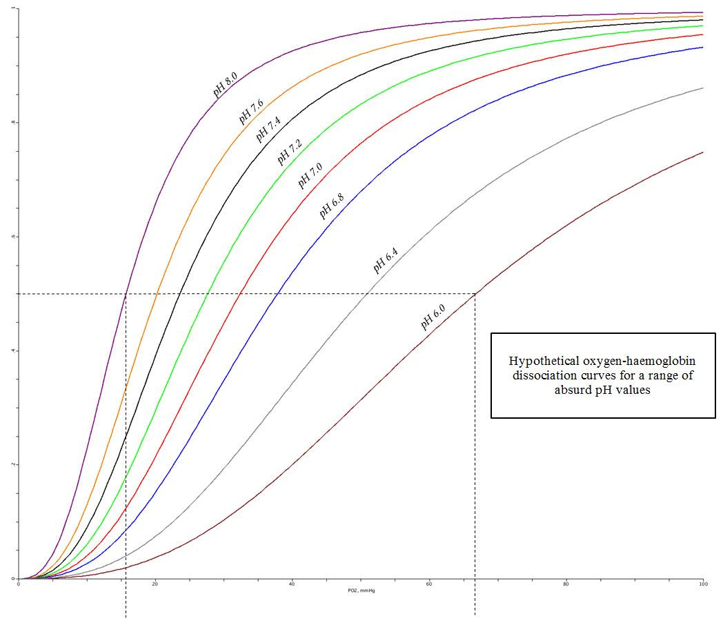 Hypothetical oxygen-haemoglobin dissociation curves for a range of absurd pH values