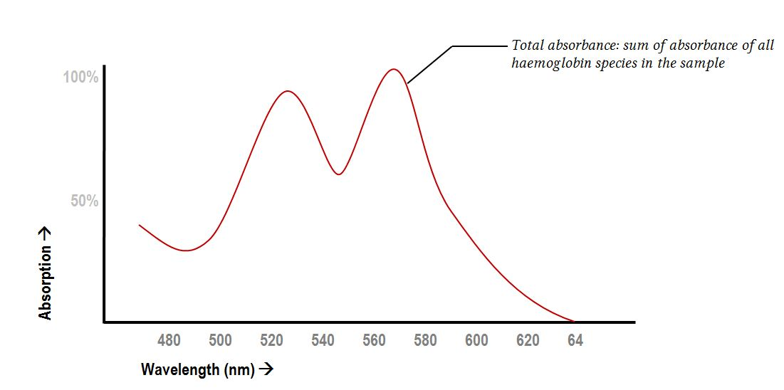 absorption spectra or total haemoglobin concentration