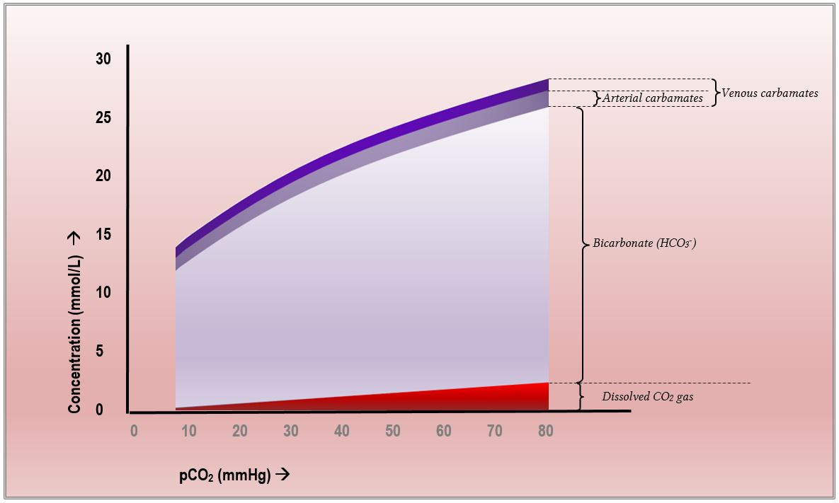 plot of pco2 vs hco3 blood concentrations