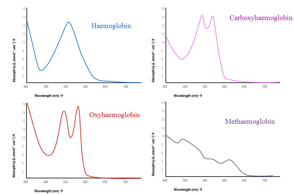 tidy diagram of absorption spectra for haemoglobin species