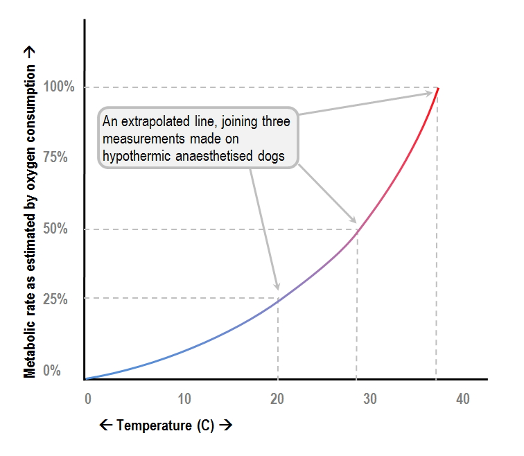 graph of the relationship between metabolic activity and body temperature